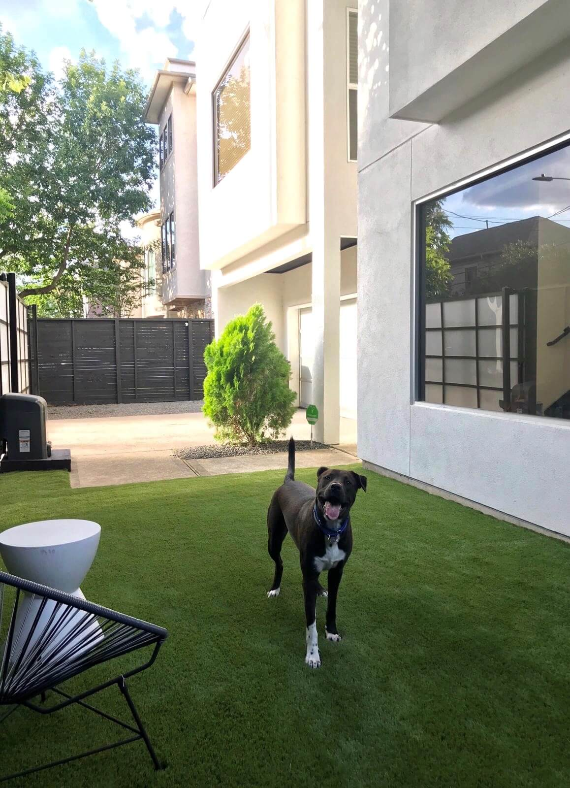 Artificial Grass for Dogs - Texas Fake Grass